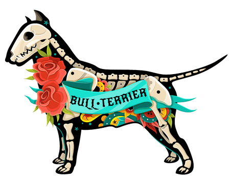 Stylized skeleton Bull Terrier. Illustration