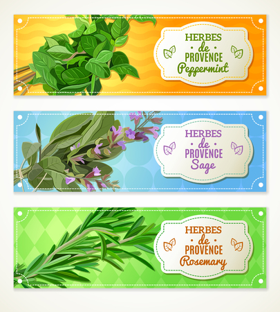 The set of three horizontal banners with Provencal herbs.  Illustration