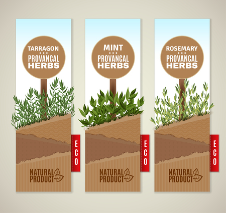 tarragon: The set of three vertical banners with Provencal herbs.