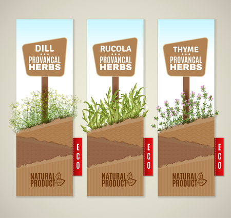 The set of three vertical banners with Provencal herbs.