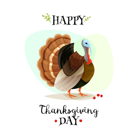 cranberry illustration: Colorful cartoon poster for thanksgiving day. Happy thanksgiving day. Vector illustration Illustration