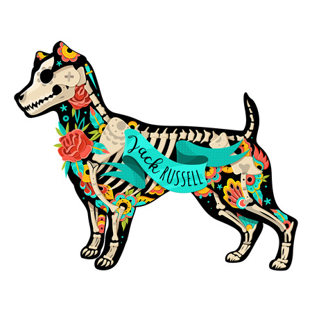 russell: Stylized skeleton Jack Russell Terrier. Jack Russell Terrier. Vector illustration