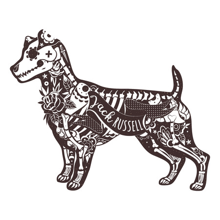 jack russell: Stylized skeleton Jack Russell Terrier. Jack Russell Terrier. Vector illustration