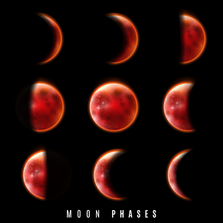 Realistic Phases of Moon on black background. Vector illustration.