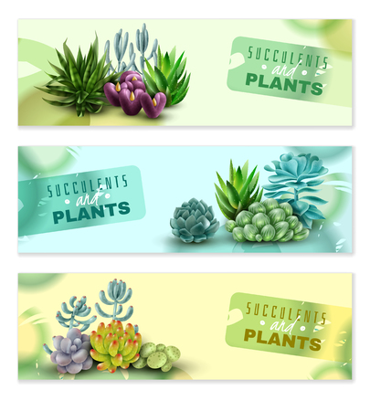 Set of three horizontal banners with succulents and plants with watercolor stains on a white background. Succulents banners. Vector illustration
