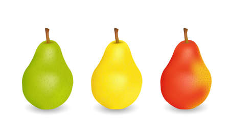 trafic: Three delicious juicy pears  green, yellow and red Illustration