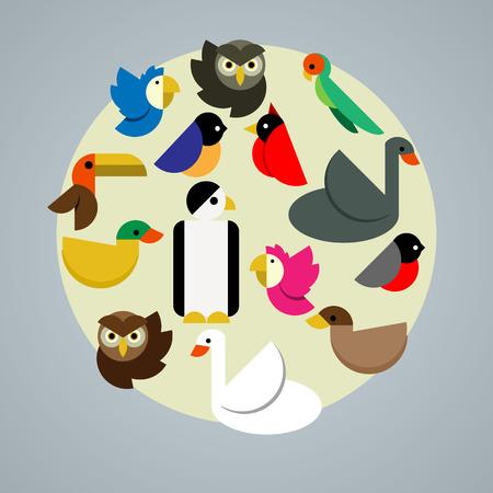 Vector illustration with various species of birds such as swan parrot penguin duck owl cardinal toucan bullfinch cockatoo. Trendy flat design. Vector illustration. For web design and apps. Cartoon set