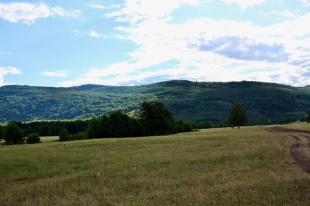 Panoramic view. Forests and fields. Green grass. Blue sky. Summer. Relax Stock Photo