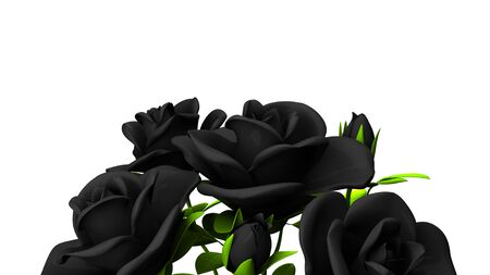 Black Roses Bouquet On White Text Space 写真素材