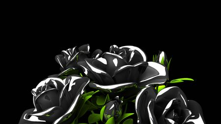 Black Roses  Bouquet on Black Text Space 写真素材