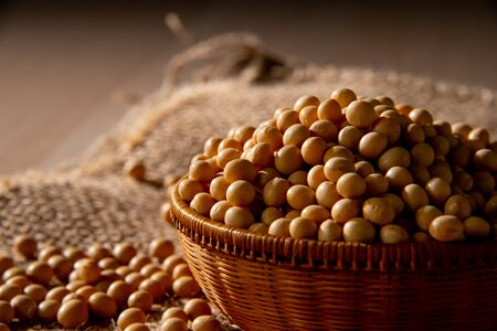 Soy bean as food background 写真素材