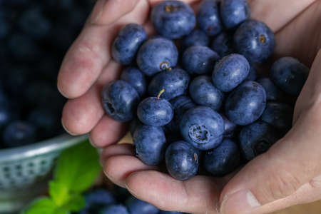 Handful of fresh ripe blueberries.