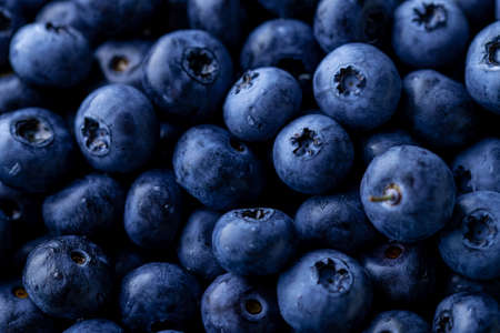 Fresh ripe blueberries background.Close up view.