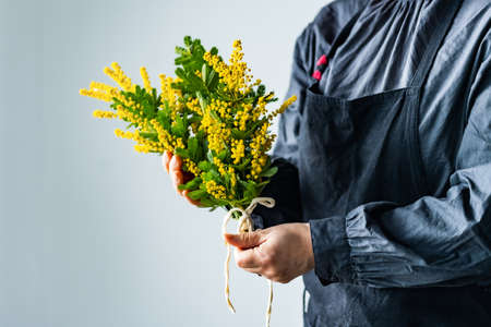 Woman holding bouquet of beautiful mimosa flowers. Archivio Fotografico