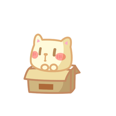 Cute cat in a box