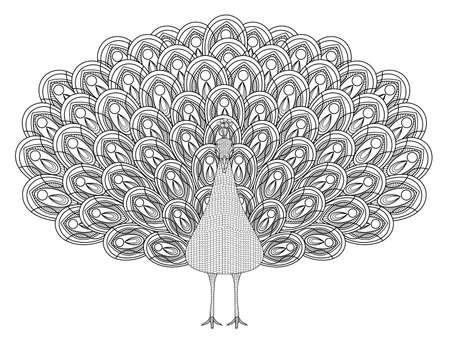 手の描かれた孔雀の絶妙なスタイルでページを着色