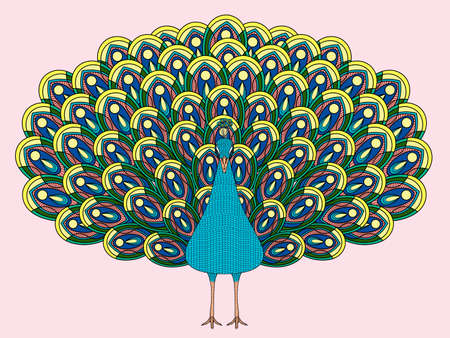hand drawn peacock coloring page in exquisite style Illusztráció