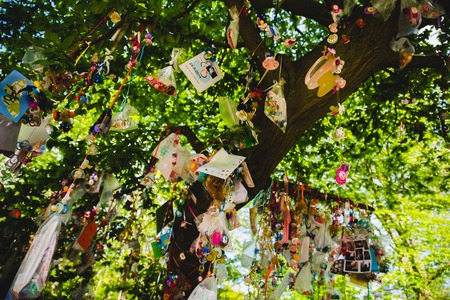 teat: pacifier, dummy, teat or soother, left by children in a tree Stock Photo
