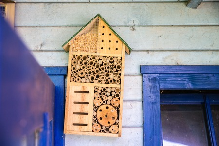 man made object: A nice wooden lacewig house in the garden for bees
