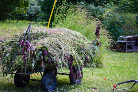 haymaking: Haymaking at summer in the village with haystack