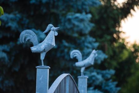 cardinal points: gallo del metal en un puerto de puerta de la puerta