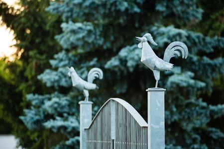 puntos cardinales: gallo del metal en un puerto de puerta de la puerta