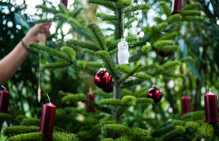 decorating christmas tree: Decorating Christmas tree with ornament at home
