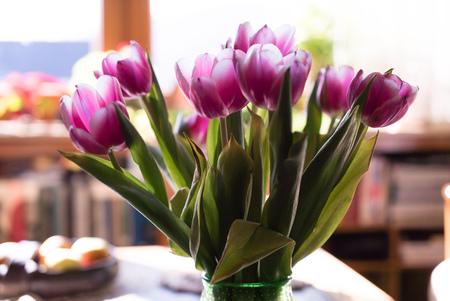 loveliness: Beautiful bouquet of purple tulips, close up