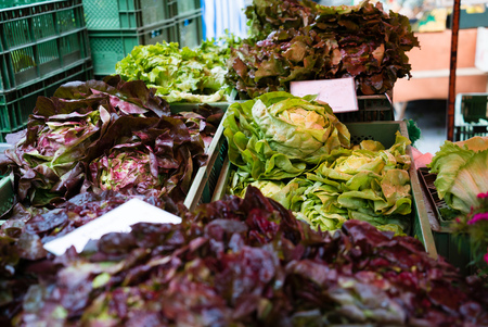 lettuces: a pile of fresh lettuces at market ready to sell
