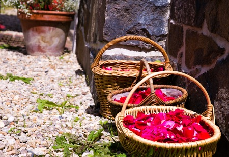 basketful: Petals rose waiting for wedding in the baskets