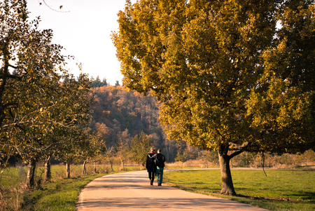 entangled: Love Couple in Autumn walking embraced and entangled Stock Photo