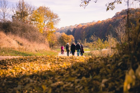 6 7 year old: Family Walking Through beautiful golden autumn landscape