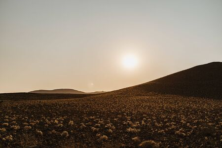 wideangle photo of sunrise over desert scenery with small cotton like plants and mountains in background