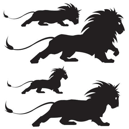 vector illustration of varios lion silhoettes Vector