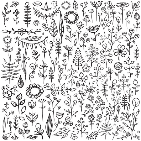 really: More than 100 creative floral elements. Really big hand-drawn set of different flowers, leafs, berries, and other nature elements.