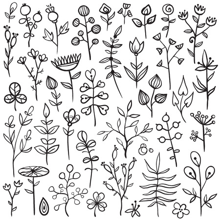 Set of 40 hand-drawn floral elements. Different flowers, leafs, berries, and other nature elements. Ilustracja