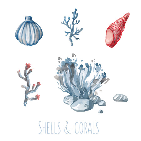 watercolour painting: Vector watercolor set of shells and corals