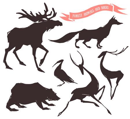 animales del bosque: Conjunto dibujado a mano de los animales del bosque y aves Vectores