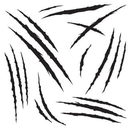 garra: Conjunto de arañazos de garras, aislado en fondo blanco, ilustración vectorial