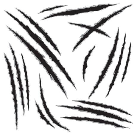 lupo mannaro: Set di artiglio graffi, isolato su sfondo bianco, illustrazione vettoriale