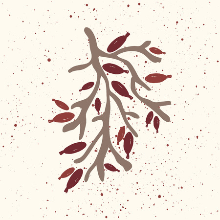 dog rose: Stylized branch of wild rose hip with berries. Briar twig. Dog rose berries. Illustration