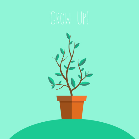 young leaves: Plant in pot. Decorative vector element. Flat illustration.