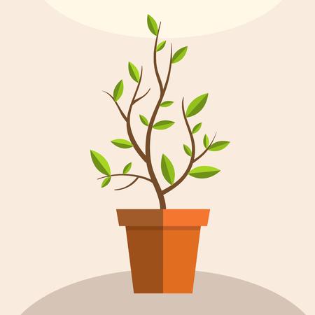 Plant in pot. Decorative vector element. Flat illustration.