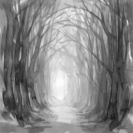 Woodland path. Ghostly forest trail, watercolor illustration. Old trees, enchanted forest, into the woods. Vector background