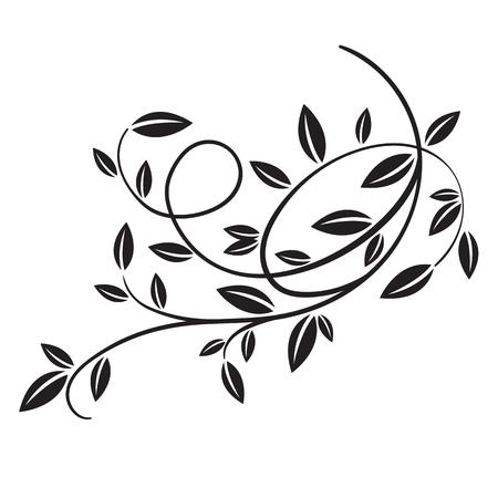 손으로 그린 된 벡터 빈티지 봄 트리 분기 흰색 배경에 고립 된 나뭇잎. 레트로 소용돌이 화려한 정원 장식, 테두리, 프레임, 코너. 서예 스타일 엽서,  일러스트