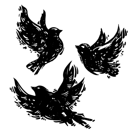Hand drawn linocut style trendy and expressive vector set of flying birds. Ink, grunge style illustration of dove silhoette isolated on white background. Bird sketches. Ilustracja