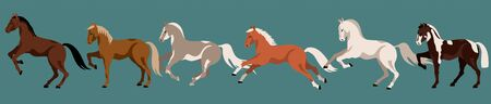 Running horses isolated vector elements. Horse breeds. Variety of beautiful farm animals and poses. Modern hand drawn horses. Isolated elements on a dark background. 矢量图像