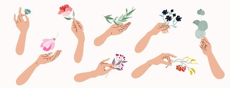 Hands holding flowers and tree branches. Collection of isolated vector illustrations of female hands holding different botanicals. Beauty and nature concept. Romantic clip art elements for web design.