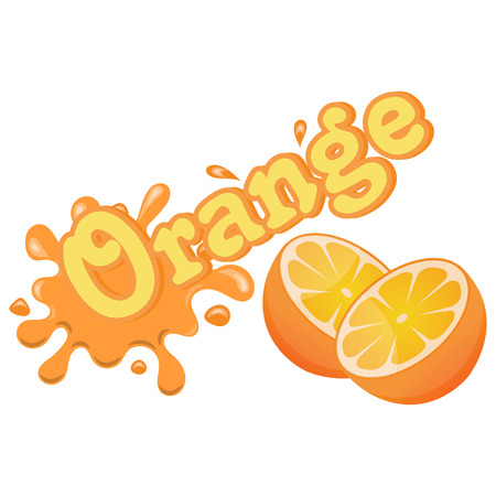 orange splash: Illustration of vector colorful orange splash an white background