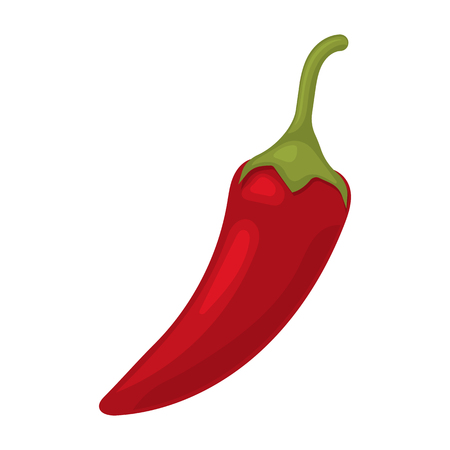 organic peppers sign: illustration of  single spicy chili pepper